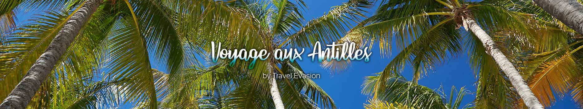 Vacances aux Antilles, un voyage en Guadeloupe ou en Martinique génial.