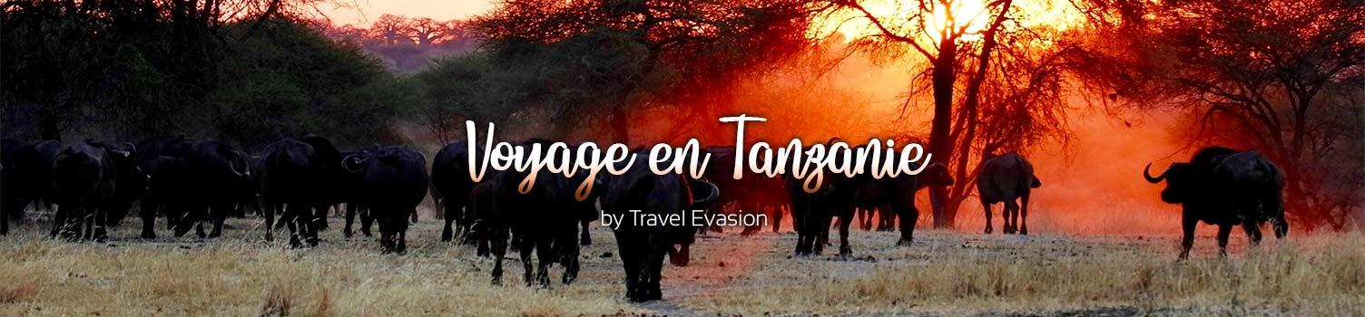 Voyage en Tanzanie, Safari dans le Serengeti ou séjour Zanzibar